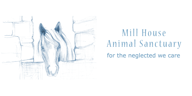 Millhouse Animal Sanctuary • Animal shelter and rescue